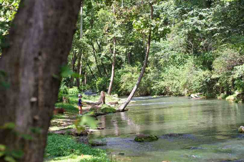 best fly fishing location for kids dry run creek arkansas