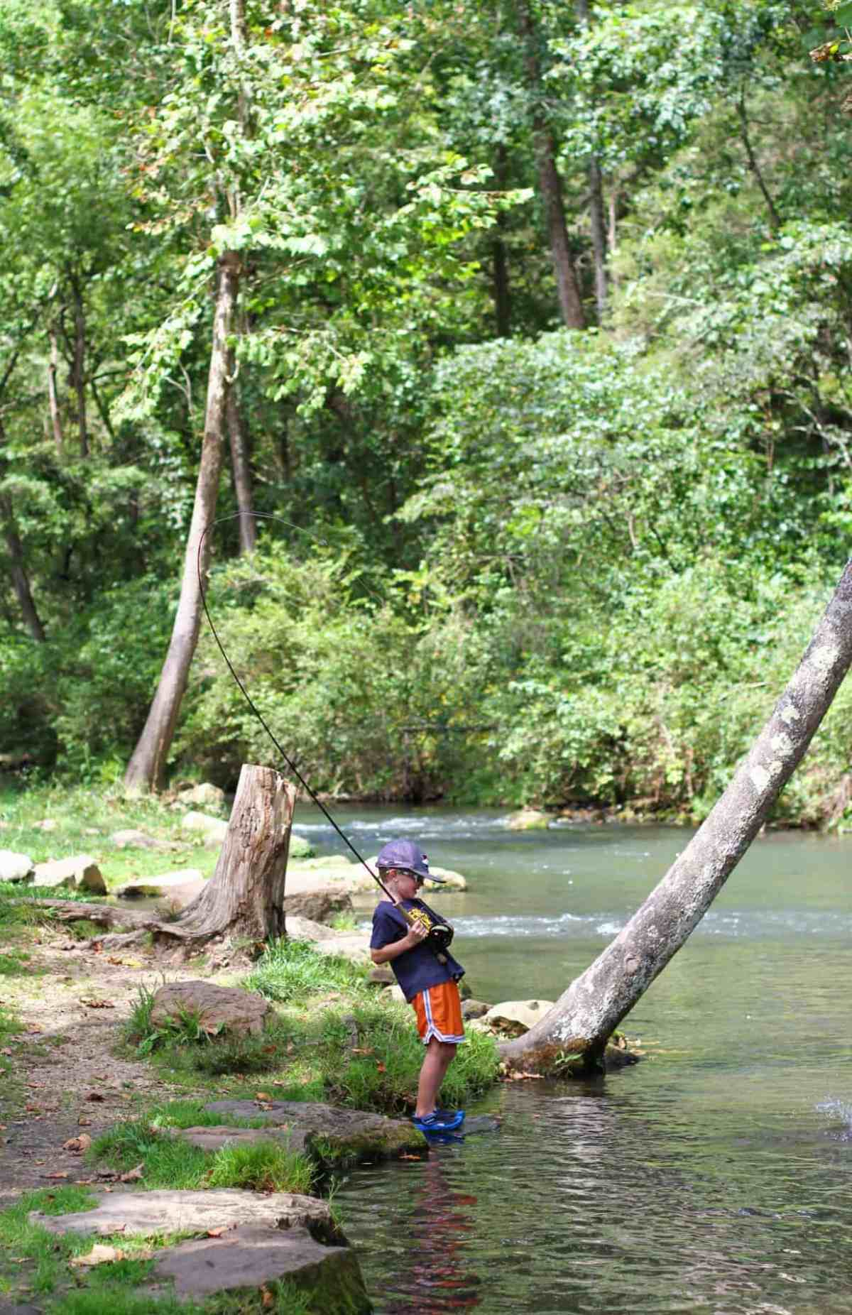 Fly Fishing for Trout with Kids at Dry Run Creek, Arkansas