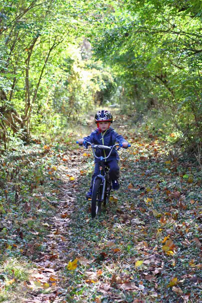 gear review schwinn bikes boys amplify kids bike