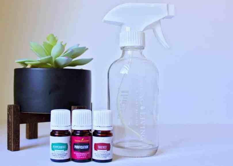Bug Repellent Essential Oil Recipe