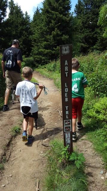 Go straight forward on Art Loeb Trail