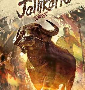 'Jallikattu' beat Amitabh Bachchan's 'Gulabo Sitabo'' Deepika Padukone's 'Chhapaak' to be selected as India's official entry to Oscars 2021 14