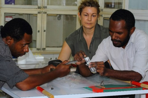 Diana Barr keeping a keen eye on her students as they perform venom extraction from a Papuan taipan under her instruction at the Charles Campbell Toxinology Centre in Papua New Guinea. (Left: Owen Paiva, right Benjamin Wawagu Bande). The venom is sent to the Instituto Clodomiro Picado in Costa Rica where it is used to produce lifesaving antivenom. This highly venomous snake has a nervous temperament which coupled with its speed and agility make it an extremely dangerous snake to work with. It is responsible for around one thousand deaths per year in Papua New Guinea.