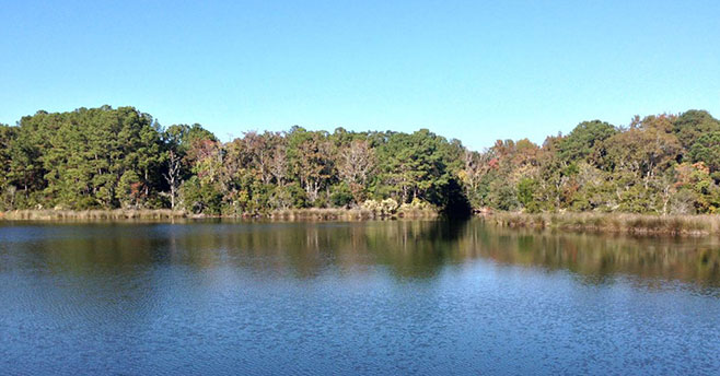 Crystal-Lake Park - Rural and Critical Land - Beaufort SC