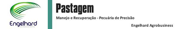 Banner coluna Titulo pastagem 600x100