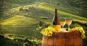 melhores vinhos portugueses