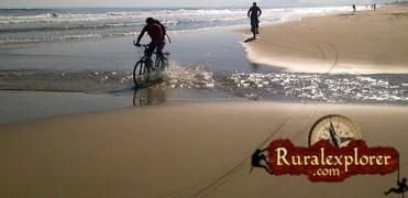 cropped-bici-playa.jpg