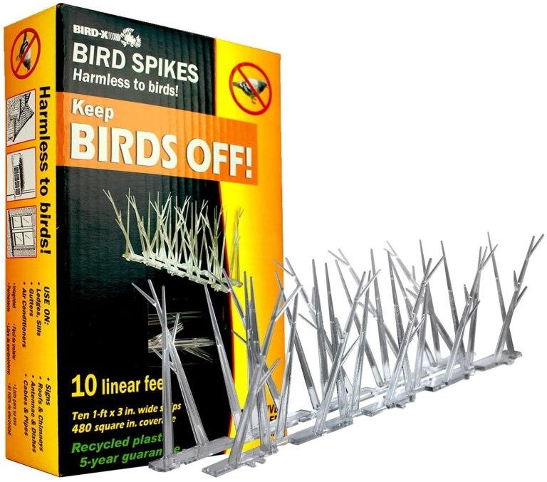 Bird-X – Polycarbonate Bird Spikes