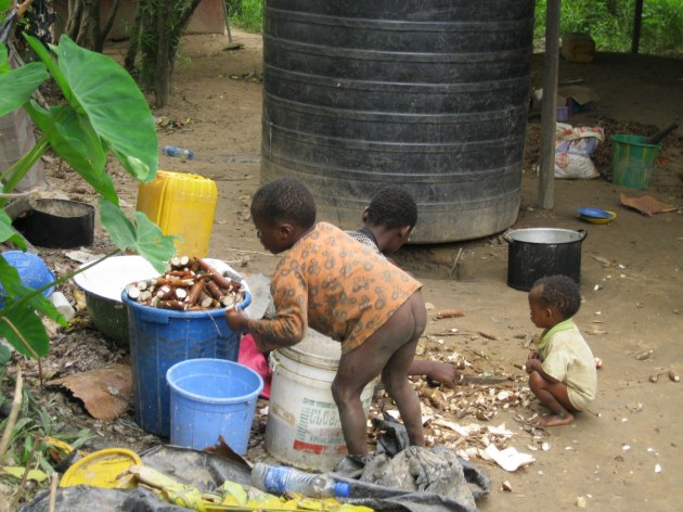 Children of Omerigboma working on cassava during school hours