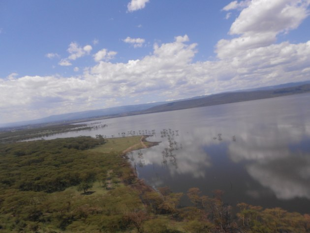 Lake Nakuru is mysteriously silent. Photograph: Lennox Yieke