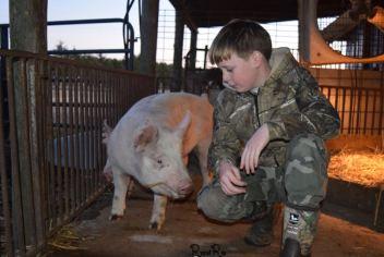 isaac and pig