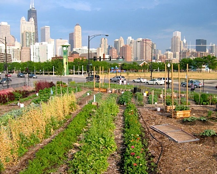 http://www.buildinggreen.com/auth/article.cfm/2009/1/29/Growing-Food-Locally-Integrating-Agriculture-Into-the-Built-Environment/