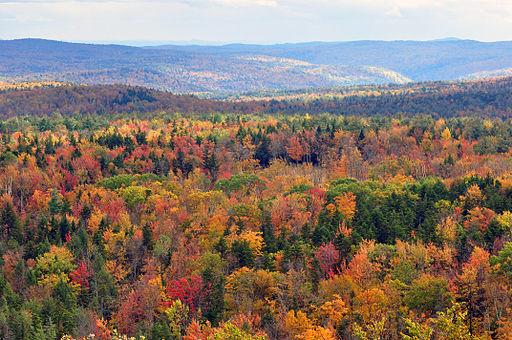 512px-Vermont_fall_foliage_hogback_mountain
