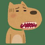 歯が痛い犬