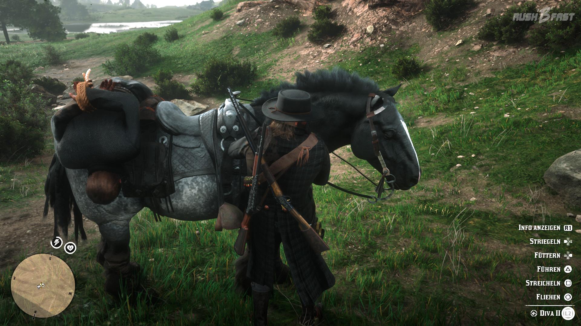 Red Dead Redemption 2: Befinden wir uns auf oder neben dem Pferd, können wir auf das Menü zugreifen, um es zu pflegen.