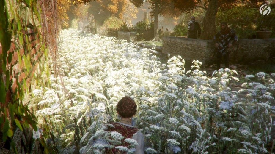 Im hohen Gras ungesehen an den Wachen der Inquisition vorbei schleichen.
