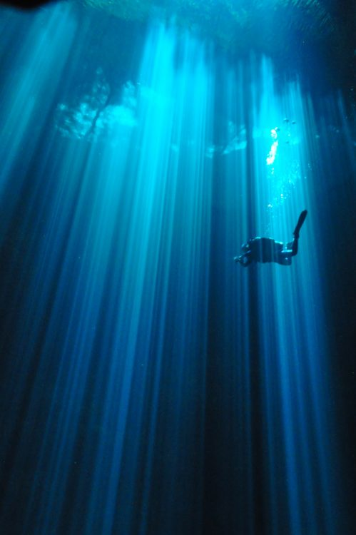 5 Reasons Why Cenote Diving Is Not For You