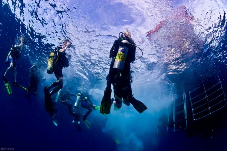 Diving With Nitrox Heres What You Need To Know To Dive Safe