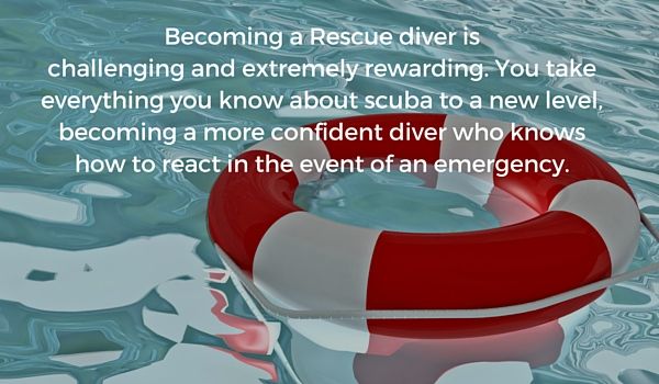 Why Should You Get Certified as a Rescue Diver? | RUSHKULT