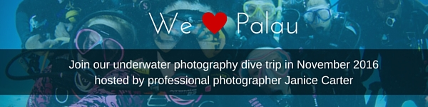 Palau in content banner