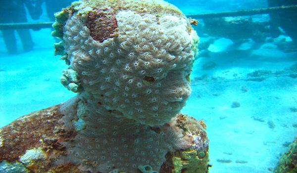 Artificial_reefs
