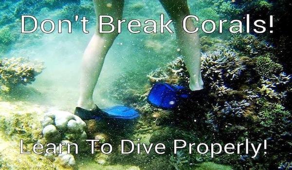 download your scuba dive checklist