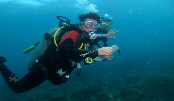 Marine_conservation_by_reefcheck