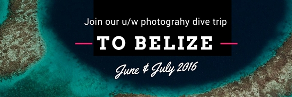 Photo_trip_banner_belize