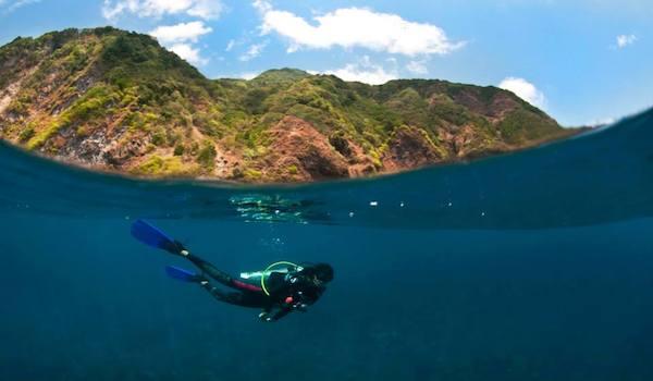 Scuba_diver_at_narcondam_island