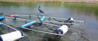 Sea Thru Kayaks VI