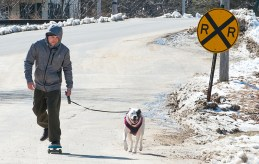 "Bill Nolin and his adopted dog Nikita are were out just ""cruising around"" Sunday morning as they skated down Judson Street in Mechanic Falls Sunday morning on their way to the skate park. ""My other dog loves to pull me all over town."""