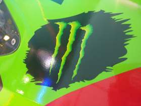 Kyle Busch Sprint Cup Series Car- Sponsor Monster Energy