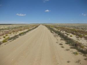 WY Desert Road