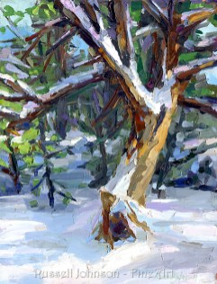 Arizona Landscape oil paintings by Russell Johnson