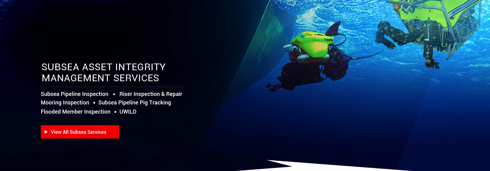 Subsea Asset Integrity Management Services