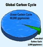 global warming ocean carbon cycle