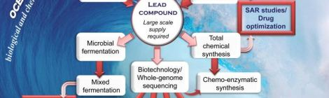 Marine Drug Discovery Becoming Major Research Venue