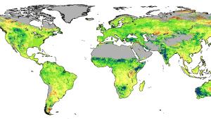CO2 Greening