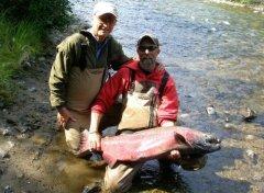 Yukon Chinook Salmon