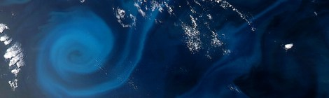 Plankton Power Swirls Ocean Pastures - A Source Of 1/3 Of Oceans Energy