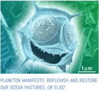 Plankton manifesto from ocean life