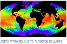ocean oxygen crisis plankton cooling