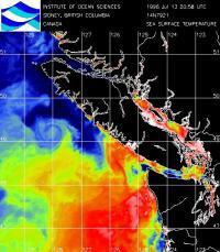 Humpback_whale_ocean_pastures_chlorophyl2