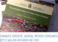 Canadian Royal Commission debacle - click to read more