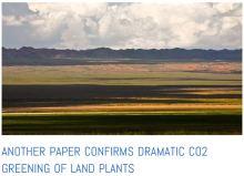 global_greening_paper_2013_storysnip1