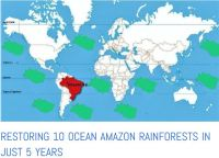 amazon rain forests go missing