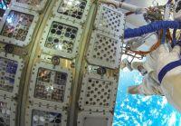 space plankton