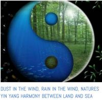 dust and rain yin and yang of nature