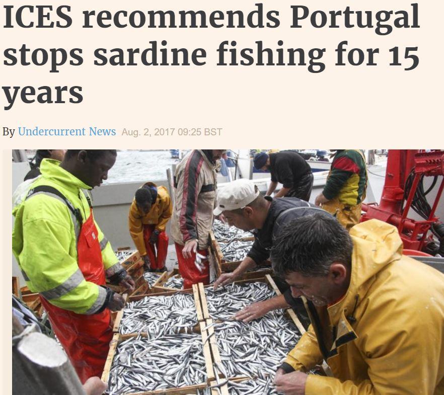 sardine fishery halt