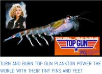 turn and burn plankton power